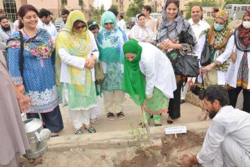 5.  Dr saima Abid planting  tree during  opening ceremony of tree plantation compaign at KMU (Custom)1534403633.JPG